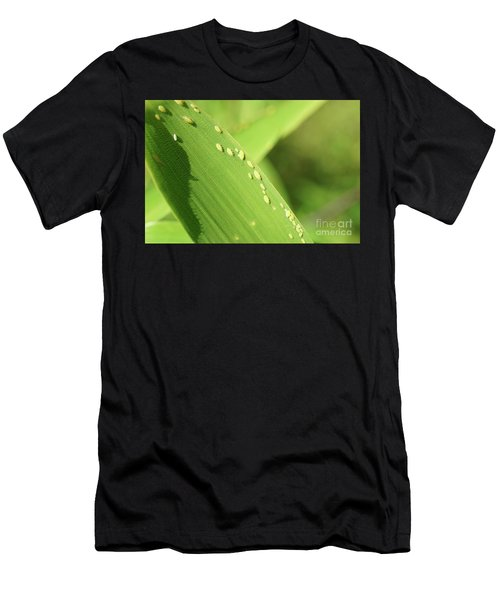 Aphid Family Men's T-Shirt (Athletic Fit)