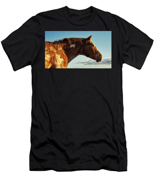 Appaloosa Mare Men's T-Shirt (Athletic Fit)