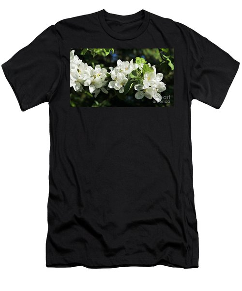 Apple Blossoms 2017 Men's T-Shirt (Athletic Fit)