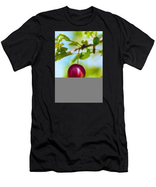 Crab Apple Men's T-Shirt (Athletic Fit)