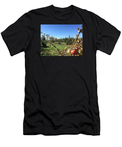 Apple Orchard 1 Men's T-Shirt (Slim Fit) by Jason Nicholas