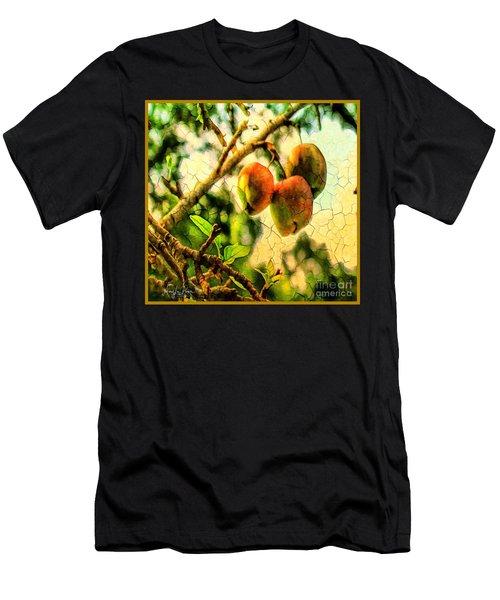 Apple  Season Men's T-Shirt (Athletic Fit)