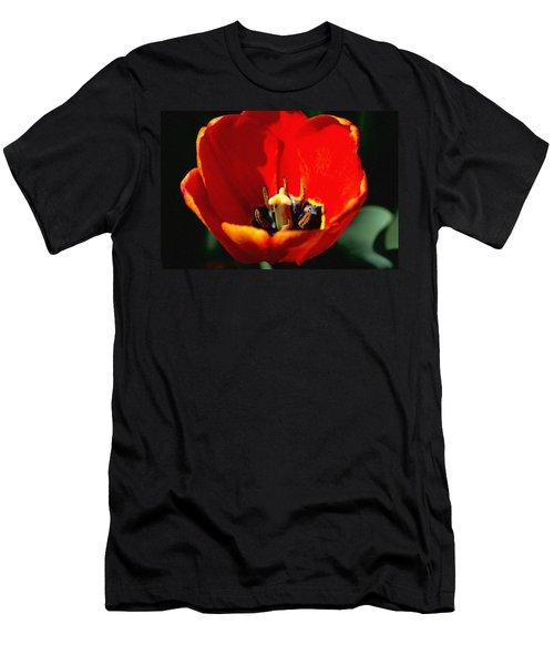 April Tulips Men's T-Shirt (Athletic Fit)