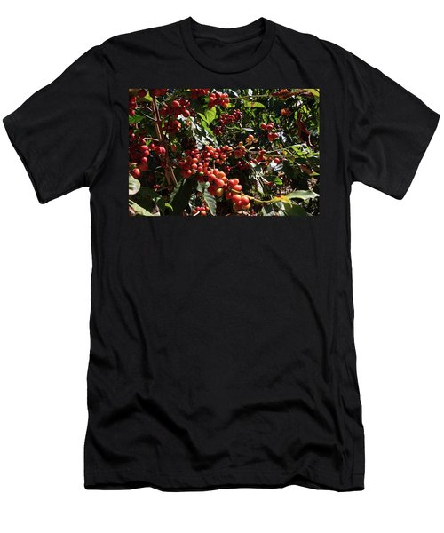 Men's T-Shirt (Athletic Fit) featuring the photograph  Arabica Coffee by Aidan Moran