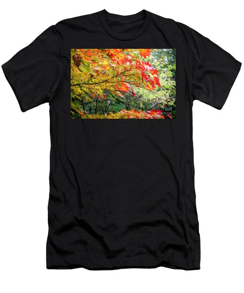 Men's T-Shirt (Athletic Fit) featuring the photograph Arboretum Autumn Leaves by Peter Simmons