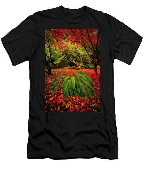 Arboretum Primary Colors Men's T-Shirt (Athletic Fit)