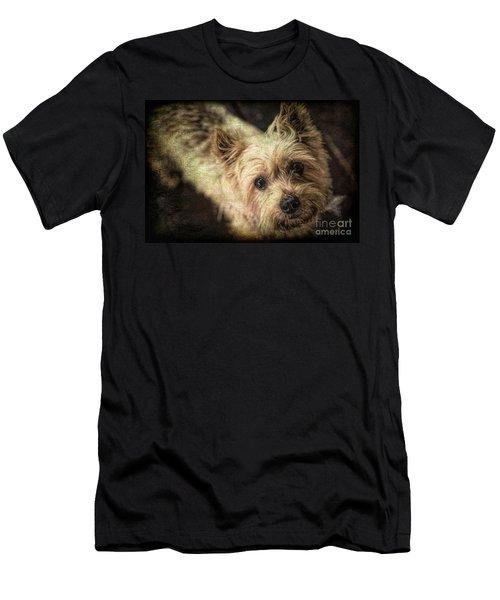 Arigato Men's T-Shirt (Slim Fit) by Lynn Sprowl