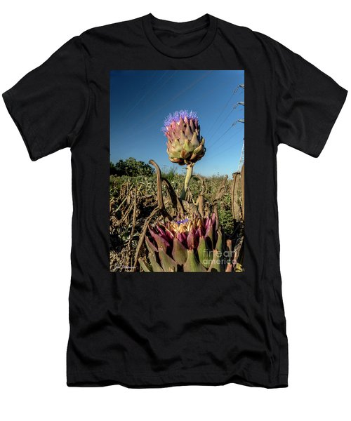 Artichoke, 02 Men's T-Shirt (Athletic Fit)