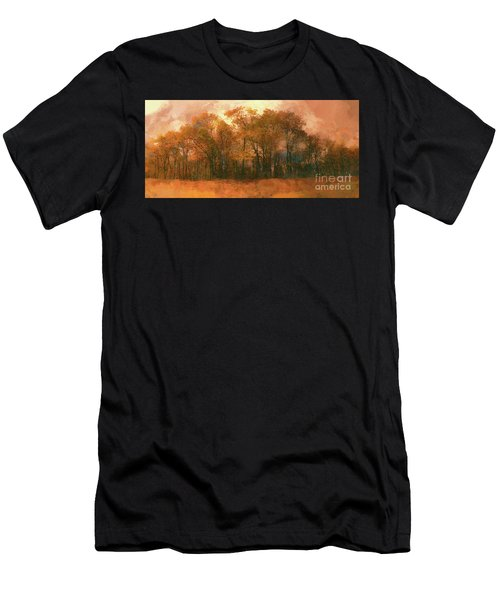 Artistic Fall Colors In The Blue Ridge Fx Men's T-Shirt (Athletic Fit)
