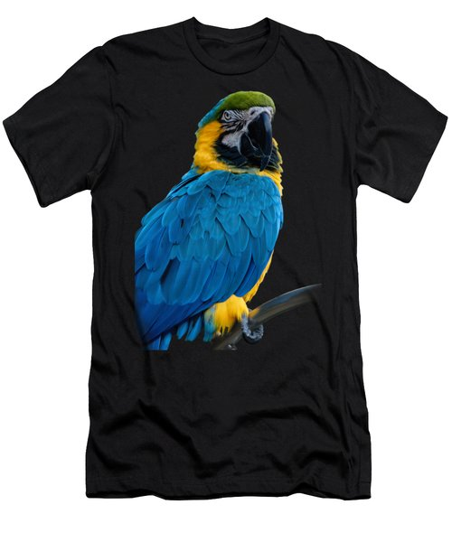 Blue Yellow Macaw No.2 Men's T-Shirt (Athletic Fit)