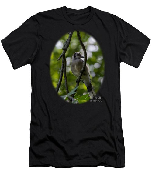 Afternoon Perch Men's T-Shirt (Athletic Fit)