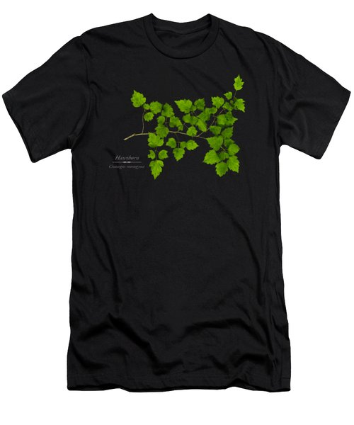 Hawthorn Men's T-Shirt (Athletic Fit)