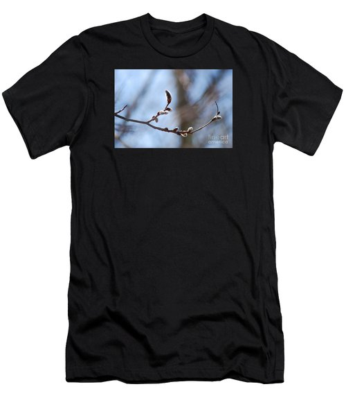 Aspen Catkins 20120314_33a Men's T-Shirt (Athletic Fit)