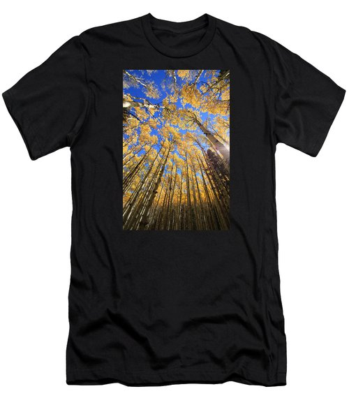 Aspen Hues Men's T-Shirt (Athletic Fit)