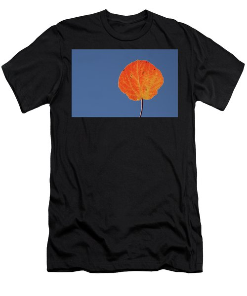 Aspen Leaf 1 Men's T-Shirt (Athletic Fit)