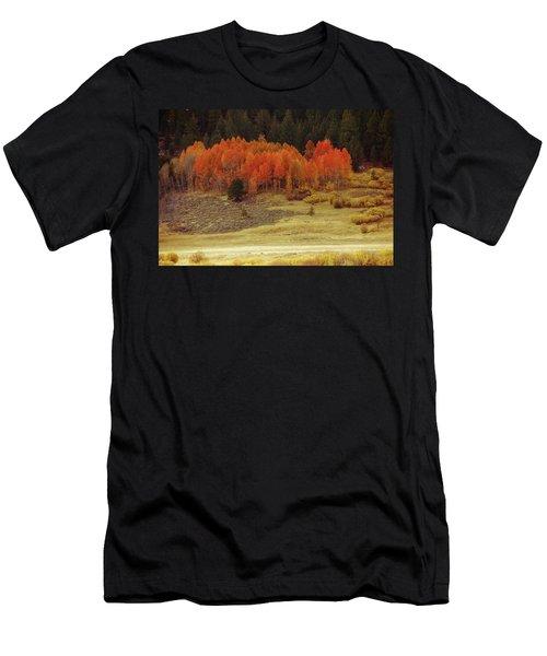 Aspen, October, Hope Valley Men's T-Shirt (Athletic Fit)