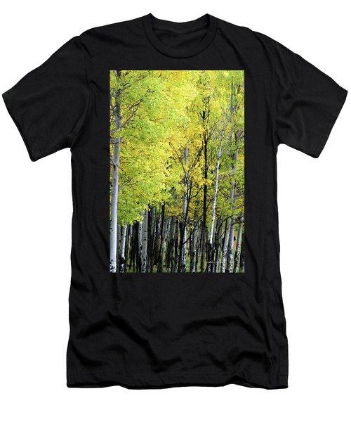 Aspen Splendor Men's T-Shirt (Athletic Fit)