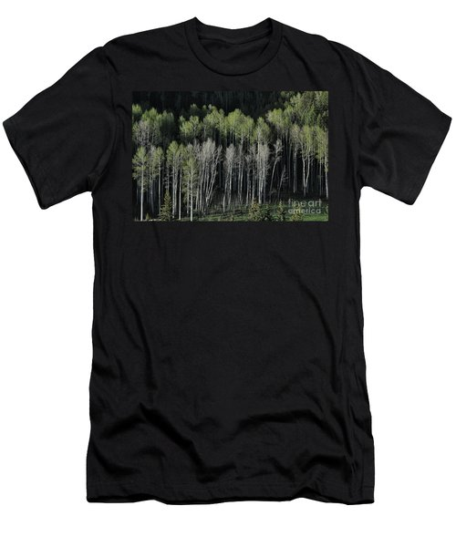 Aspen Spring Men's T-Shirt (Athletic Fit)