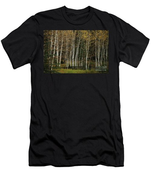 Aspens In The Fall Men's T-Shirt (Athletic Fit)