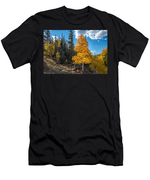 Aspen Tree In Fall Colors San Juan Mountains, Colorado. Men's T-Shirt (Athletic Fit)