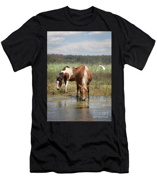 Assateague Pony Pair Men's T-Shirt (Athletic Fit)