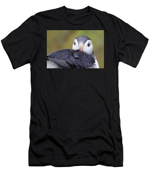 Atlantic Puffin With Rain Drops Men's T-Shirt (Athletic Fit)