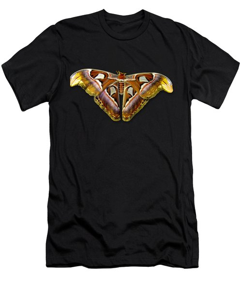 Atlas Moth 2 Sehemu Mbili Unyenyekevu Men's T-Shirt (Athletic Fit)