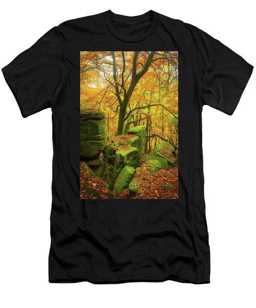 Automnal Glow Men's T-Shirt (Athletic Fit)