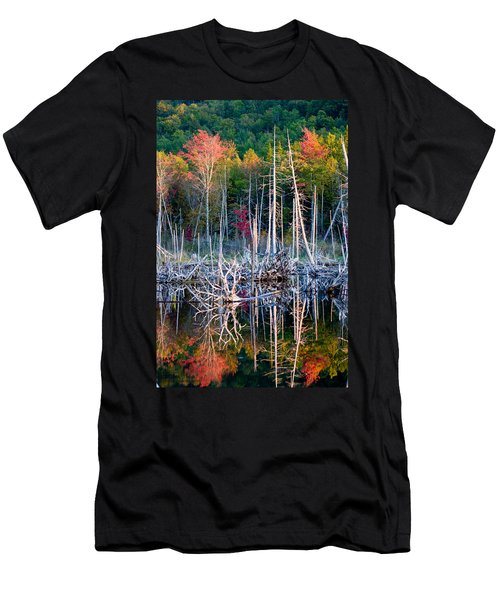 Autumn At Moosehead Bog Men's T-Shirt (Athletic Fit)