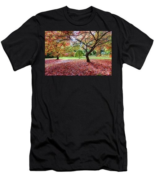 Autumn At Westonbirt Arboretum Men's T-Shirt (Athletic Fit)