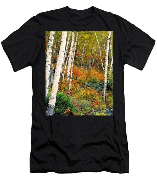Autumn Birch Men's T-Shirt (Athletic Fit)