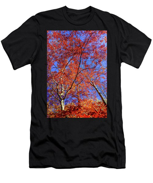 Men's T-Shirt (Slim Fit) featuring the photograph Autumn Blaze by Karen Wiles