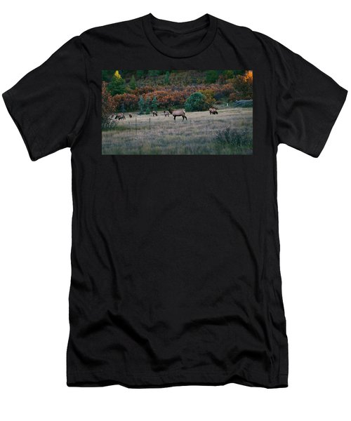 Autumn Bull Elk Men's T-Shirt (Athletic Fit)