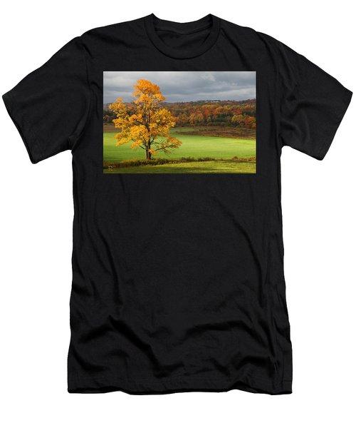 Autumn Colors Men's T-Shirt (Athletic Fit)