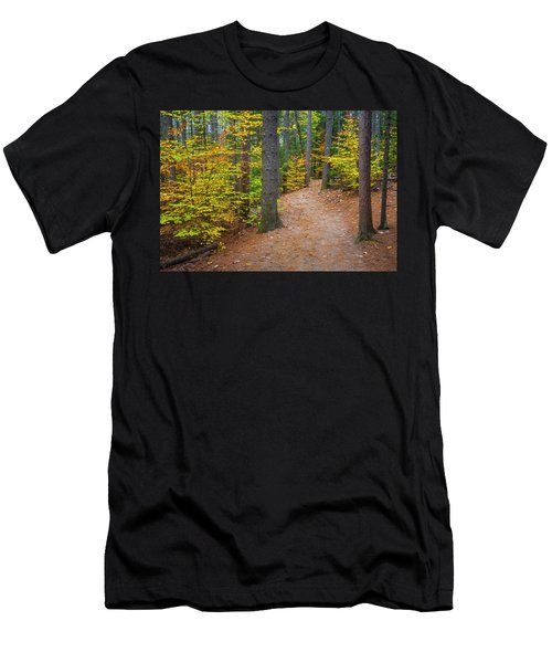 Autumn Fall Foliage In New England Men's T-Shirt (Athletic Fit)