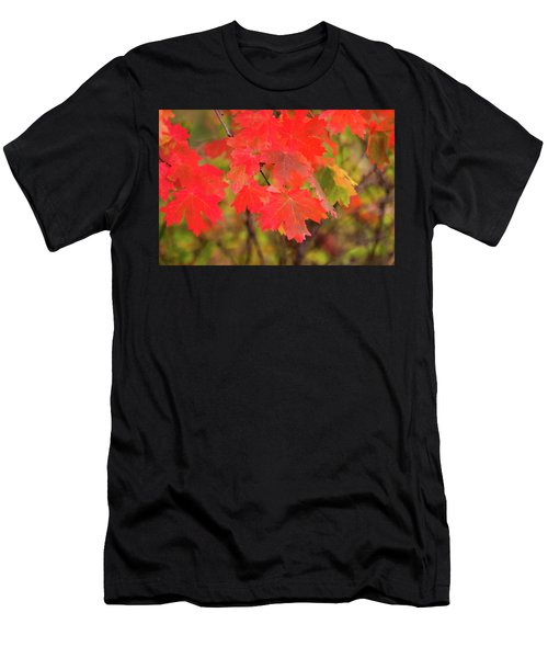 Men's T-Shirt (Athletic Fit) featuring the photograph Autumn Flash by Bryan Carter