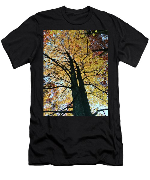 Autumn Glory Men's T-Shirt (Athletic Fit)