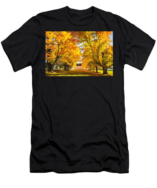 Autumn Gold IIi Men's T-Shirt (Athletic Fit)