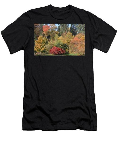 Autumn In Baden Baden Men's T-Shirt (Athletic Fit)