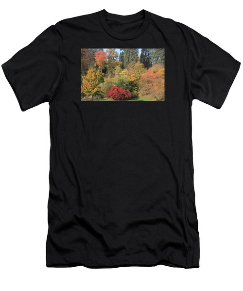 Autumn In Baden Baden Men's T-Shirt (Athletic Fit)