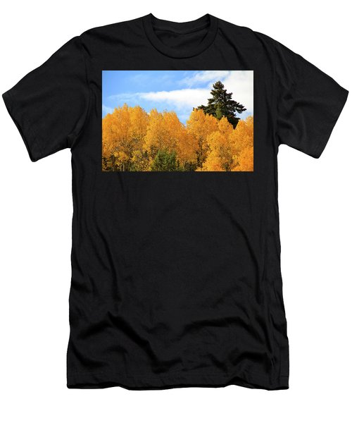 Autumn In The Owyhee Mountains Men's T-Shirt (Athletic Fit)
