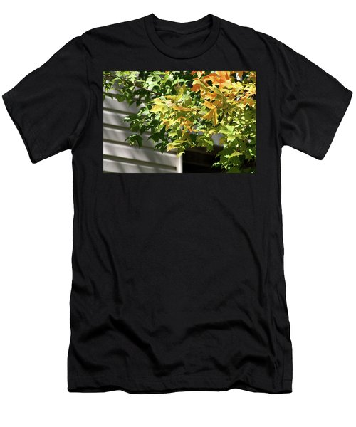 Autumn Leaves Against White Men's T-Shirt (Athletic Fit)