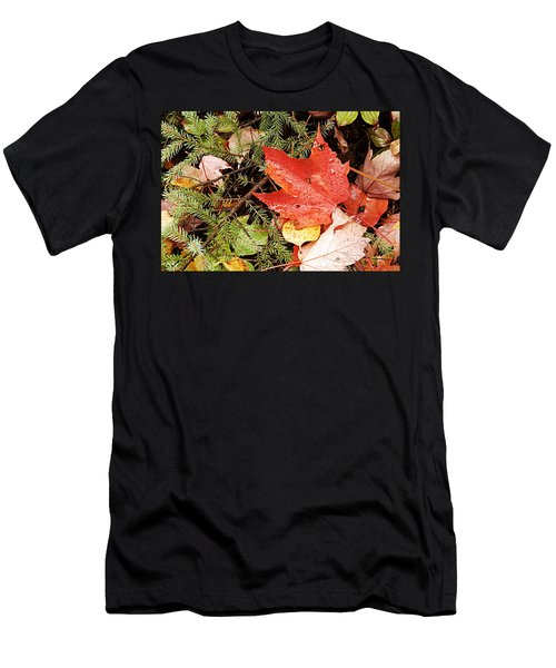 Autumn Leaves Men's T-Shirt (Slim Fit) by Larry Ricker
