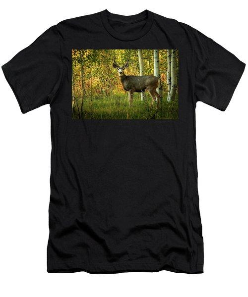 Autumn Mule Deer Men's T-Shirt (Athletic Fit)