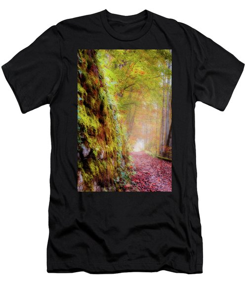 Autumn Path Men's T-Shirt (Athletic Fit)