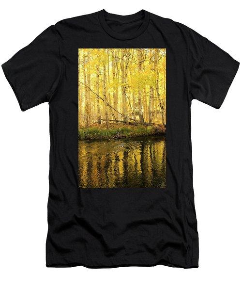 Autumn Soft Light In Stream Men's T-Shirt (Athletic Fit)