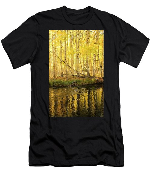 Autumn Soft Light In Stream Men's T-Shirt (Athletic Fit)
