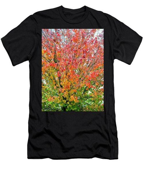 Autumn Splendor Men's T-Shirt (Athletic Fit)