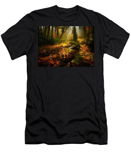 Autumn Sunrays Men's T-Shirt (Athletic Fit)