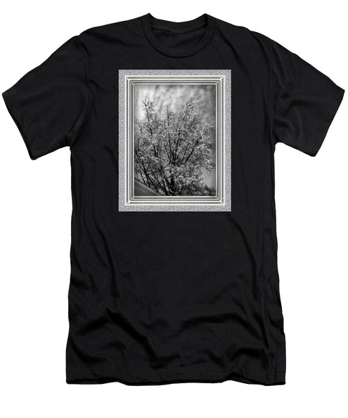 Autumn Tree At Jim Beam In Black And White With Mottled Grey Border Men's T-Shirt (Athletic Fit)
